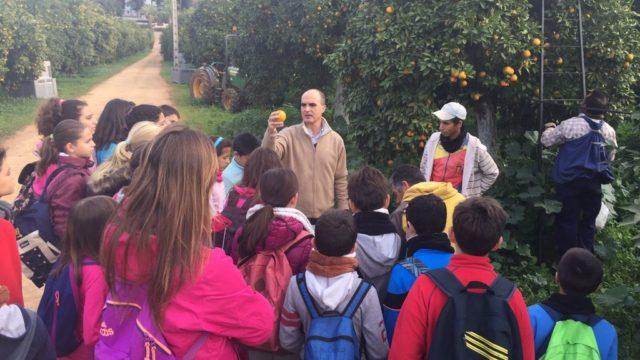 HAM-Ave-Maria-orange-school-3