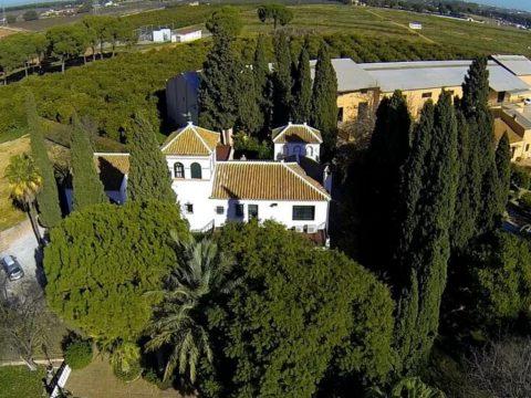 HAM-Ave-Maria-Farm-home-dron