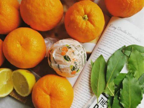 HAM-naranjas-con-laurel